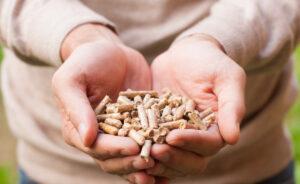 Quels sont les risques à l'utilisation de pellets de mauvaise qualité?